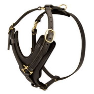 Padded Dog Harness, Exclusive Leather Handcrafted ITEM!
