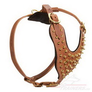 Walking Dog Harness Brown with Brass ☀