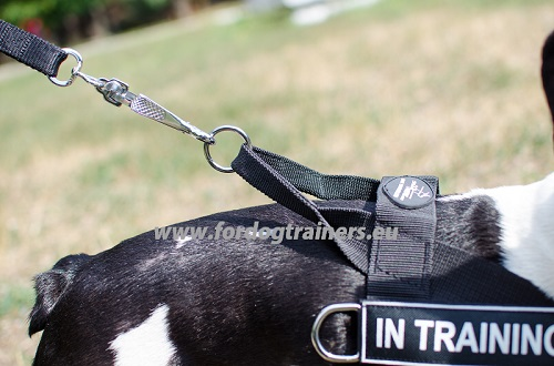 Dog Harness for Small Dog Walking