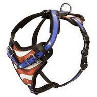 Harness Painted with USA Flag Picture ✔