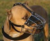 Wire Basket Muzzle for large breeded dogs