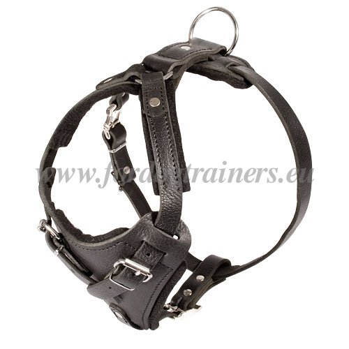 Leather Dog Harness with Handle for Training