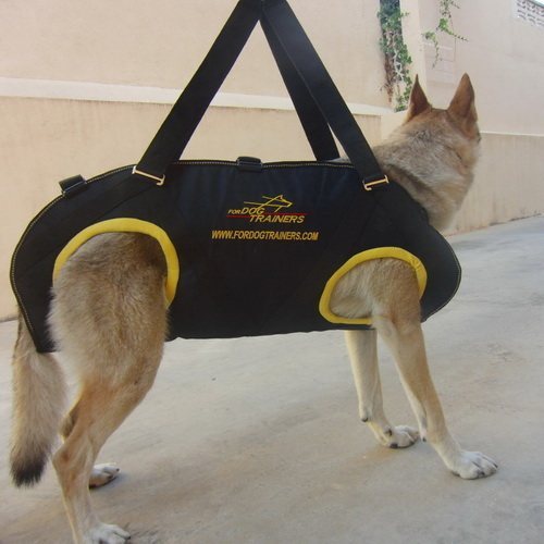 Nylon Dog Harness for Rescue Operations