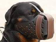 "Leather Dog Muzzle ""Dondi plus"" for Rottweiler"