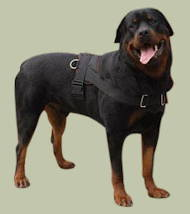 Rottweiler Nylon multi-purpose dog harness