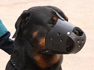 Everyday Leather dog muzzle for Rottweiler M51
