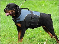 Nylon Outdoor Dog Vset Harness for Rottweiler