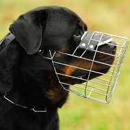 Rottweiler New design wire dog muzzle