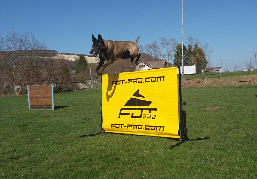 Dog Obedience Practice Jumps by FDT