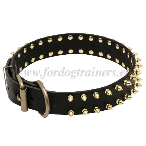 Leather Collar with Brass Buckle and Ring