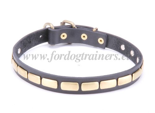 Leather Collar with Strong Brass Hardware