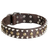 Large Leather Black Collar for Dogs