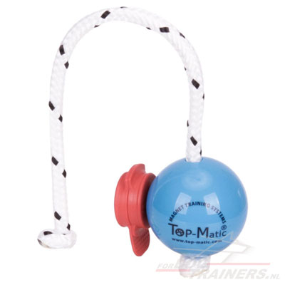 Top-Matic Fun Ball with Maxi Power Clip Strong