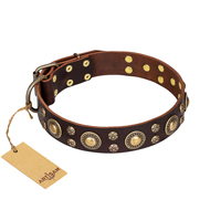 "Fancy Brown Dog Collar ""Flower Melody"" FDT Artisan"