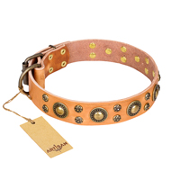 "Designer Dog Collar ""Sophisticated Glamor"" FDT Artisan Tan"