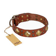 "Light Brown Collar ""Flight of Fancy"" FDT Artisan for Dogs"