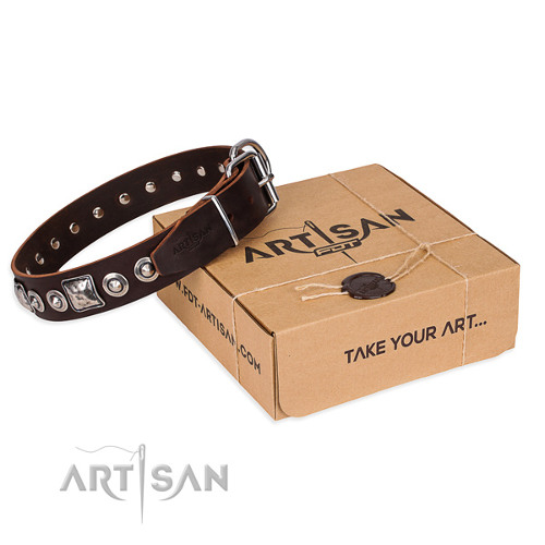 Handmade Leather Dog Collar with Present Box