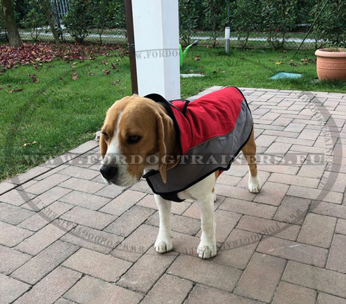 Soft Vest Harness for Dogs Nylon-made