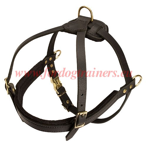 Chest Leather Dog Harness