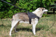 Nylon Harness Super Resistant for West Siberian Laika☔
