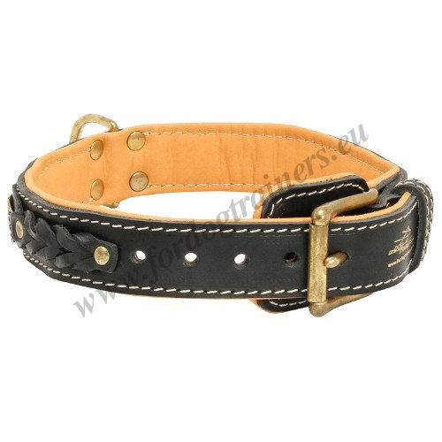 Walking Dog Collar with Braids