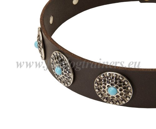 Leather Collar for Disobedient Dogs