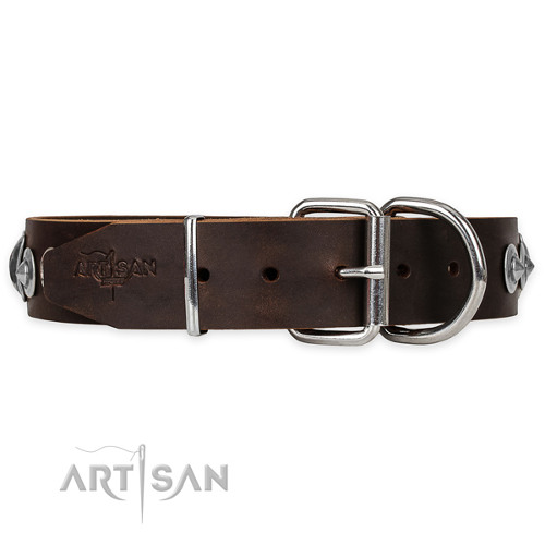Wide Dog Collar for Big Dogs