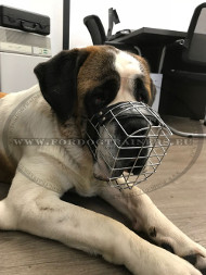 Wire Basket Muzzle for St. Bernard Dog ↟