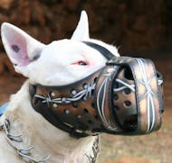 Hand painted leather dog muzzle Draht for Bull Terrier