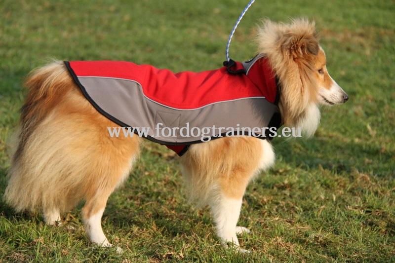 manteau d 39 hiver pour chien chiens grands et petits. Black Bedroom Furniture Sets. Home Design Ideas