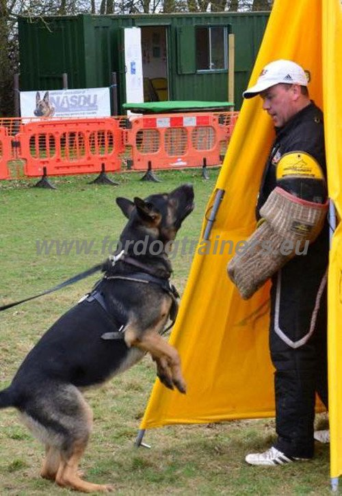 Training Bite Sleeve Schutzhund
