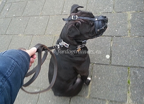 Attractive Leather Basket