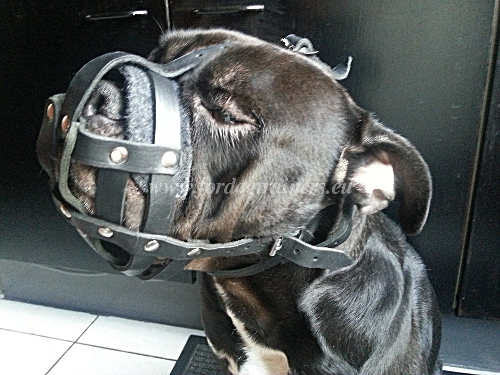 Practical and Comfortable Leather Muzzle