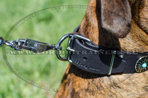 Nickel steel buckle and ring of the Embellished dog