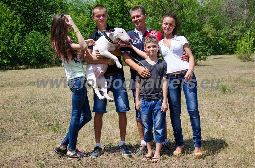Family with Bull Terrier