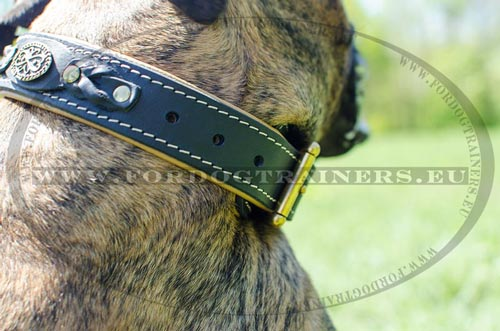 Metal fitting and riveted braid of the collar for Boxer