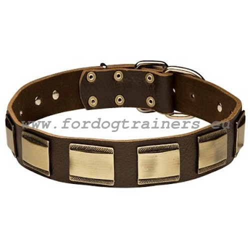 Royal Design dog collar of brown leather