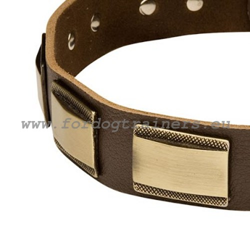 Leather dog collar's decorations