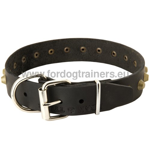 Husky Leather Collar with Rust-resistant Furniture