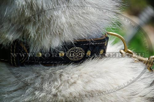 Wide Handmade Collar with Braids for Husky