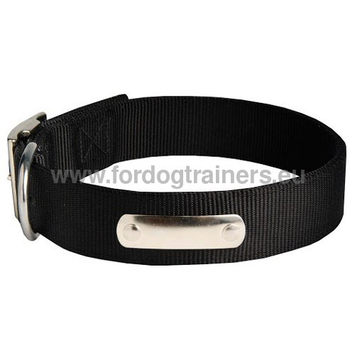 Doberman personified nylon dog collar