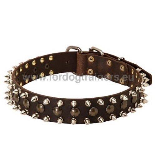 Durable leather collar for Laika with decorations
