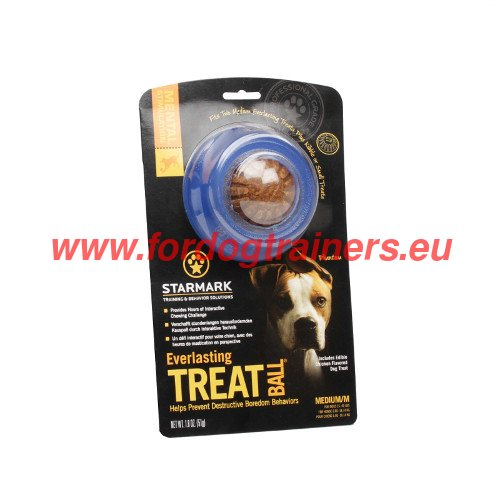 Healthy Food in Non-toxic Dog Toy