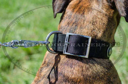 Strong hardware of the Nylon Boxer Collar