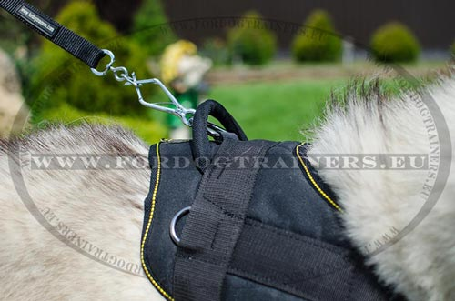 Resistant Pulling Harness for Husky