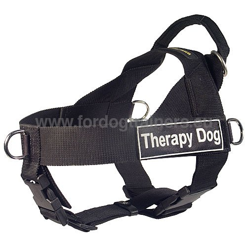 Siberian Husky Practical Nylon Harness