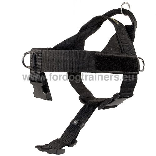 Dog Harness of High Quality for Husky