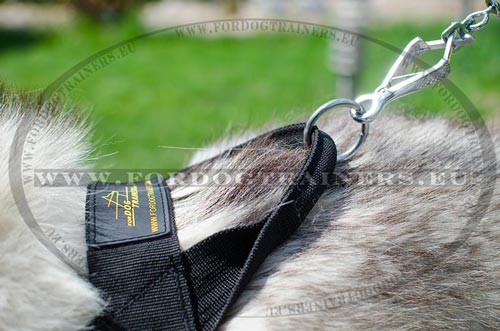 Adjusted Nylon Harness for Siberian Husky