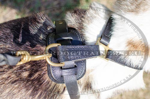 Hunting Dog Attack Harness