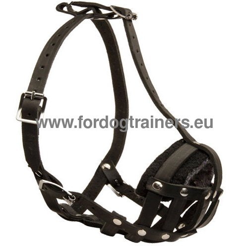 Leather Muzzle for Dog Education